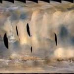 Opportunity e la tempesta di sabbia su Marte