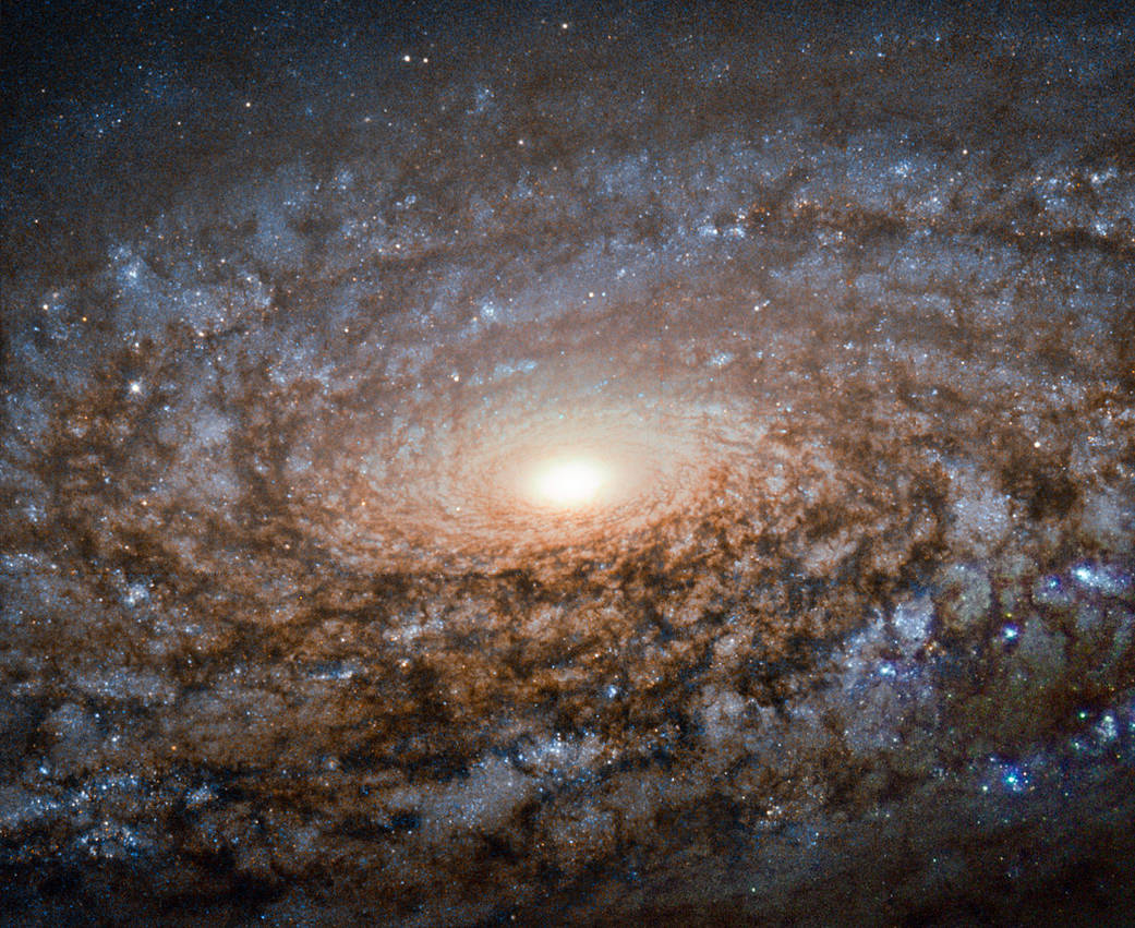 This new image of the spiral galaxy NGC 3521 from the NASA/ESA Hubble Space Telescope is not out of focus. Instead, the galaxy itself has a soft, woolly appearance as it a member of a class of galaxies known as flocculent spirals. Like other flocculent galaxies, NGC 3521 lacks the clearly defined, arcing structure to its spiral arms that shows up in galaxies such as Messier 101, which are called grand design spirals. In flocculent spirals, fluffy patches of stars and dust show up here and there throughout their discs. Sometimes the tufts of stars are arranged in a generally spiralling form, as with NGC 3521, but illuminated star-filled regions can also appear as short or discontinuous spiral arms. About 30 percent of galaxies share NGC 3521's patchiness, while approximately 10 percent have their star-forming regions wound into grand design spirals. NGC 3521 is located almost 40 million light-years away in the constellation of Leo (The Lion). The British astronomer William Herschel discovered the object in 1784. Through backyard telescopes, NGC 3521 can have a glowing, rounded appearance, giving rise to its nickname, the Bubble Galaxy.
