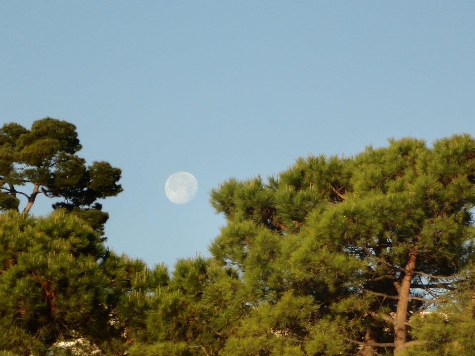 Alle nostre spalle la Luna, un giorno dopo il plenilunio, sta tramontando.