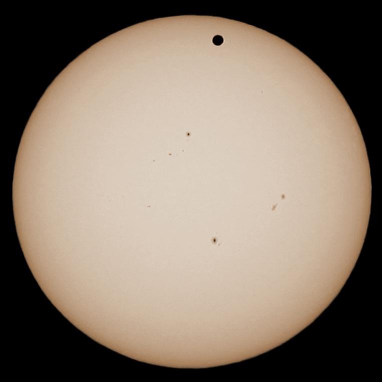 """Il disco solare con grande abbondanza di macchie fotosferiche e l'indonfondibile """"pallino"""" dovuto al pianeta Venere, ripreso da Colona al Maksutov di Daniele. Anche questa foto è stata pubblicata lo stesso giorno sul sito dell'ANSA"""