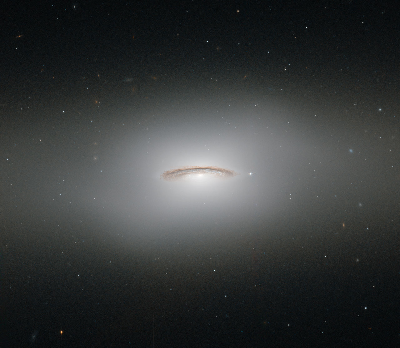 This neat little galaxy is known as NGC 4526. Its dark lanes of dust and bright diffuse glow make the galaxy appear to hang like a halo in the emptiness of space in this new image from the NASA/ESA Hubble Space Telescope. Although this image paints a picture of serenity, the galaxy is anything but. It is one of the brightest lenticular galaxies known, a category that lies somewhere between spirals and ellipticals. It has hosted two known supernova explosions, one in 1969 and another in 1994, and is known to have a colossal supermassive black hole at its centre that has the mass of 450 million Suns. NGC 4526 is part of the Virgo cluster of galaxies. Ground-based observations of galaxies in this cluster have revealed that a quarter of these galaxies seem to have rapidly rotating discs of gas at their centres. The most spectacular of these is this galaxy, NGC 4526, whose spinning disc of gas, dust, and stars reaches out uniquely far from its heart, spanning some 7% of the galaxy's entire radius. This disc is moving incredibly fast, spinning at more than 250 kilometres per second. The dynamics of this quickly whirling region were actually used to infer the mass of NGC 4526's central black hole — a technique that had not been used before to constrain a galaxy's central black hole. This image was taken using Hubble's Wide Field Planetary Camera 2.  A version of this image was entered into the Hubble's Hidden Treasures image processing competition by contestant Judy Schmidt. Hidden Treasures was an initiative to invite astronomy enthusiasts to search the Hubble archive for stunning images that have never been seen by the general public.