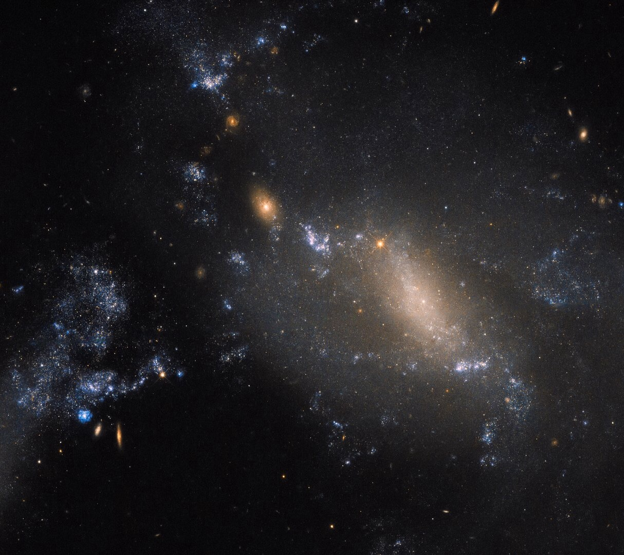 Some galaxies are harder to classify than others. Here, Hubble's trusty Wide Field Camera 3 (WFC3) has captured a striking view of two interacting galaxies located some 60 million light-years away in the constellation of Leo (The Lion). The more diffuse and patchy blue glow covering the right side of the frame is known as NGC 3447 — sometimes NGC 3447B for clarity, as the name NGC 3447 can apply to the overall duo. The smaller clump to the upper left is known as NGC 3447A. The trouble with space is that it is, to state the obvious, really, really big. Astronomers have for hundreds of years been discovering and naming galaxies, stars, cosmic clouds and more. Unifying and regulating the conventions and classifications for everything ever observed is very difficult, especially when you get an ambiguous object like NGC 3447, which stubbornly defies easy categorisation.  Overall, we know NGC 3447 comprises a couple of interacting galaxies, but we're unsure what each looked like before they began to tear one another apart. The two sit so close that they are strongly influenced and distorted by the gravitational forces between them, causing the galaxies to twist themselves into the unusual and unique shapes seen here. NGC 3447A appears to display the remnants of a central bar structure and some disrupted spiral arms, both properties characteristic of certain spiral galaxies. Some identify NGC 3447B as a former spiral galaxy, while others categorise it as being an irregular galaxy.