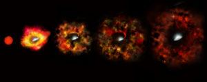 STSCI-H-g-1719a-f1600x4000-300x120