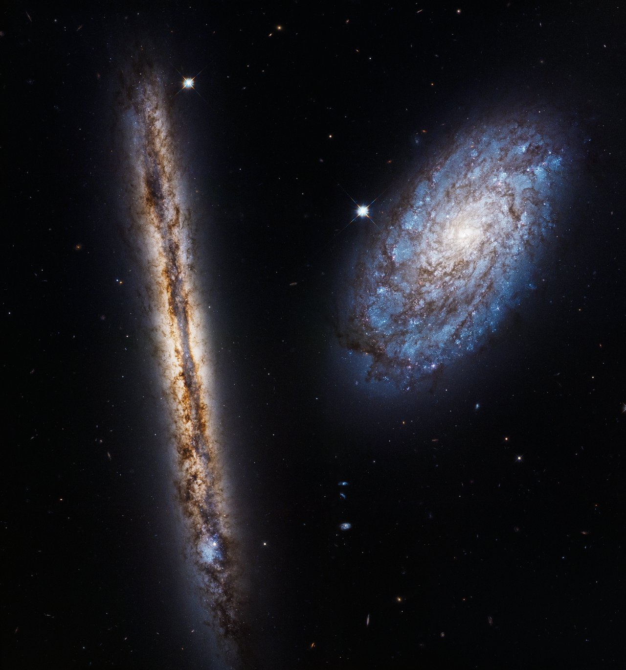 This image displays the galaxies NGC 4302 — seen edge-on — and NGC 4298, both located 55 million light-years away. They were observed by Hubble to celebrate its 27th year in orbit. The galaxy NGC 4298 is seen almost face-on, allowing us to see its spiral arms and the blue patches of ongoing star formation and young stars. In the edge-on disc of NGC 4302 huge swathes of dust are responsible for the mottled brown patterns, but a burst of blue to the left side of the galaxy indicates a region of extremely vigorous star formation. The image is a mosaic of four separate captures from Hubble, taken between 2 and 22 January 2017, that have been stitched together to give this amazing field of view. Two different types of light emitted by the galaxies — visible and near-infrared — have been combined to give a rich and colourful image. This light was captured by Hubble's Wide Field Camera 3, one of the telescope's most advanced imaging instruments.