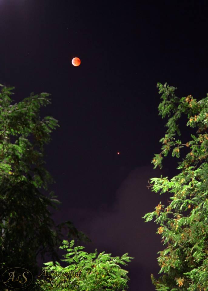 Luna in eclissi e Marte all'opposizione: la spettacolare coppia ripresa tra gli alberi ad Ostia Antica. [Foto di Paolo Colona]