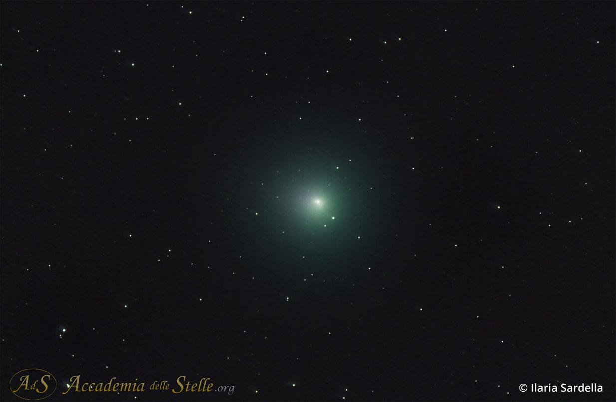 La cometa Wirtanen ripresa da Ilaria Sardella la notte del 9 dicembre durante un'uscita astronomica dell'Accademia delle Stelle