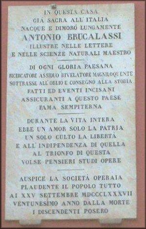 Antonio Brucalassi