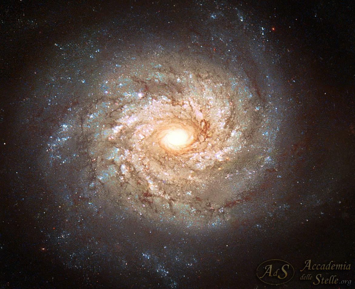 Immagine realizzata nel 2003 con tre diverse esposizioni ottenute con la Wide Field e Planetary Camera 2 di Hubble attraverso filtri RGB. All'immagine originale abbiamo applicato una lieve elaborazione utilizzando anche la ripresa IR.
