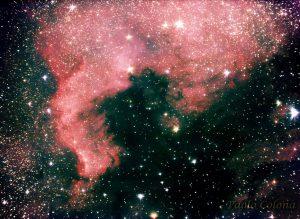 NGC 7000 - Nebulosa Nord America