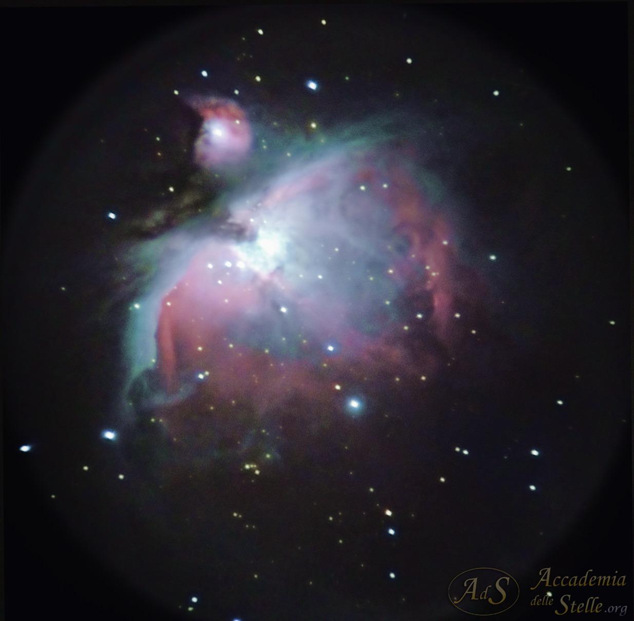 M42-cellulare