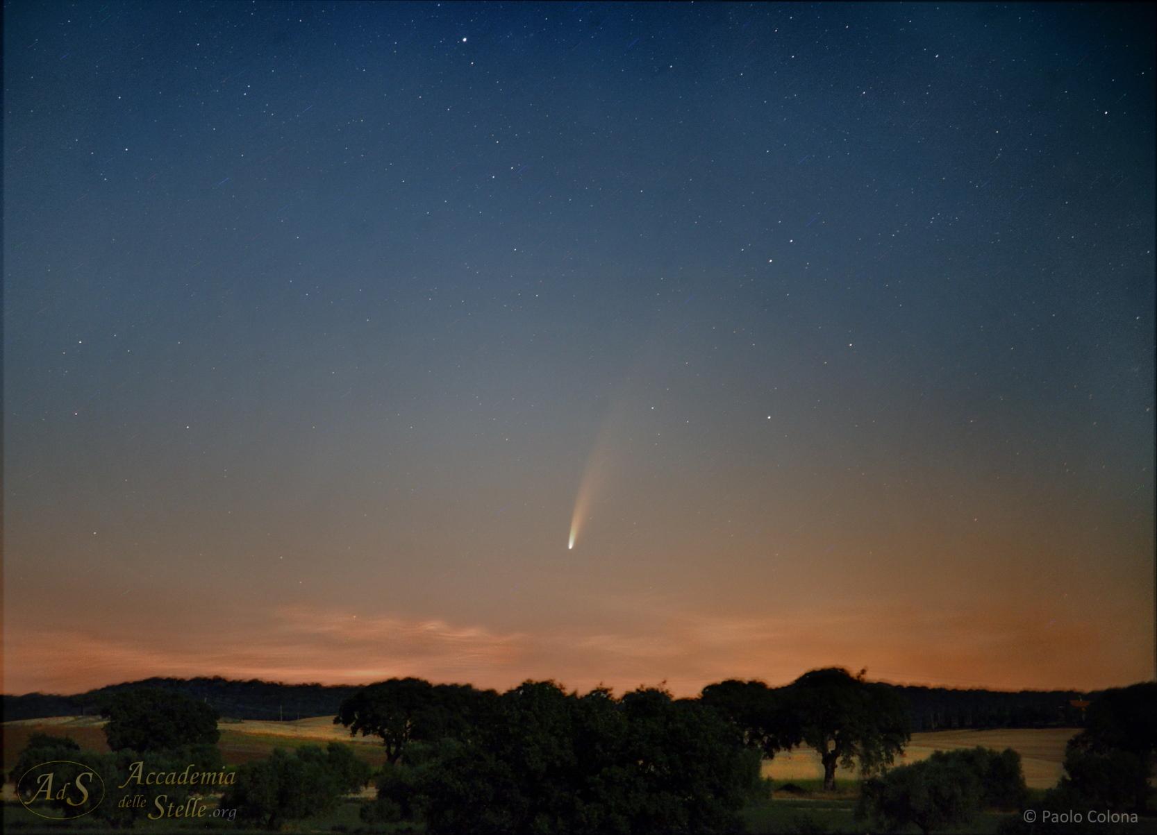 La cometa si alza sulla campagna della Tuscia (alto Lazio) prima dell'alba, l'8 luglio. Sotto di essa, all'orizzonte, si notano le rarissime nubi nottilucenti. Dati tecnici: Canon Eos 5D II, obbiettivo 24-105 @105, f/4, 15 scatti da 4s, 6400 ISO non inseguita © Paolo Colona